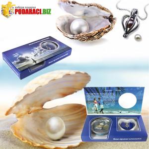 perla na kysmeta9